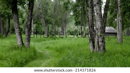 Meadows and trees in HDR-toning. Green and dark, barn in the background. - stock photo