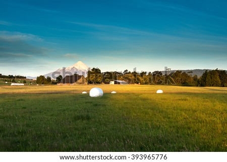 Meadows around the LLanquihue Lake, X Region, Chile