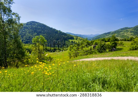 Meadows near the village in the Carpathian mountains - stock photo