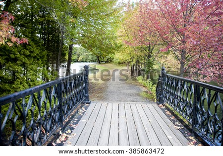 Meandering path to bridge across small pond
