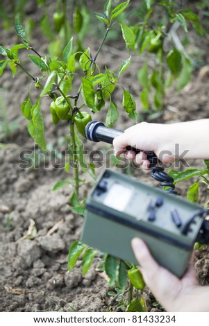 Measuring radiation levels of green peppers - stock photo