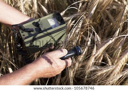 Measuring radiation levels of wheat - stock photo