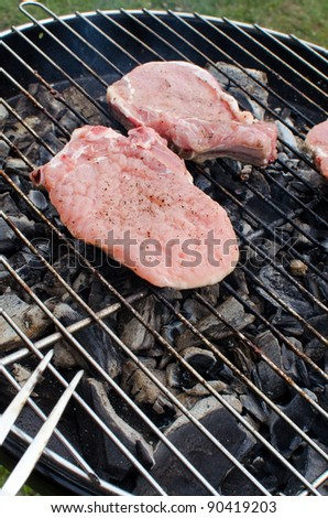 Meat cooking on barbecue