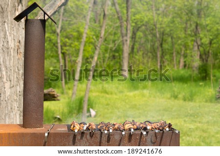 Meat kebabs cooking over a hot BBQ fire at a lush green park campsite with leafy green spring trees - stock photo