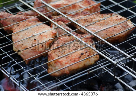 meat pieces grilled on the charcoals