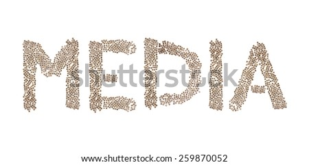 Media written in letters formed with wooden cubes with letters isolated on white background - stock photo