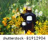 Medical herbs with aromatherapy essential oil and tincture in glass bottle. - stock photo