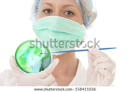 Medical laboratory analysis of petri dishes - stock photo