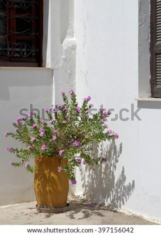 Mediterranean Courtyard Details - stock photo