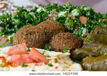 Mediterranean mezze plate with dolmas, babaganoush, falafel, and hummus - stock photo