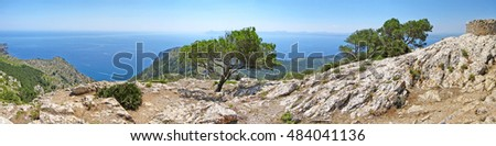 Mediterranean mountain / ocean panorama with tree - horizon / blue water in the background