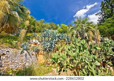 Mediterranean plants green landscape hill view - stock photo