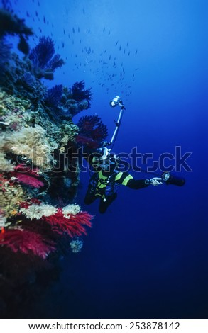 Mediterranean Sea, U.W. photo, underwater photographer and red gorgonians - FILM SCAN - stock photo