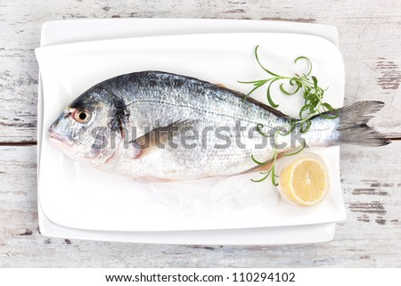 Mediterranean seafood concept. Fresh sea bream on white plate with lemon and rosemary on white wooden textured background. - stock photo