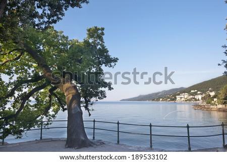 Mediterranean Seaside walkway Opatija Croatia - stock photo