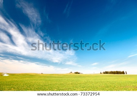 Medow in spring - stock photo
