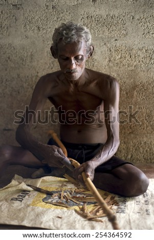MEETIYAGODA, SRI LANKA - JANUARY 02: Man is processing branches of cinnamon in small workshop near MEETIYAGODA on January  02, 2015. Sri Lanka is one of the top producer of cinnamon in the world.  - stock photo