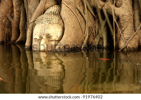 Mega flood in 50 years at big head  buddha at tree in Wat Mahatrat temple  in Ayuttaya historical park , Middle of Thailand . - stock photo