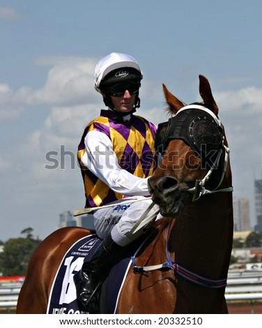 MELBOURNE NOVEMBER 6 - Brad Rawiller on board Jeune De Coeur for the 2008 Oaks at Flemington in Melbourne - stock photo