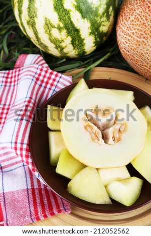 Melon and watermelon on brown plate on bamboo plate on napkin on grass