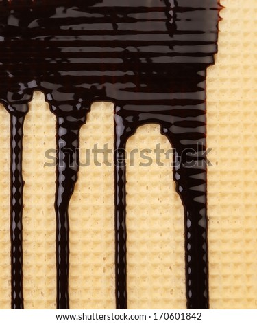 Melted chocolate dripping on waffle - stock photo