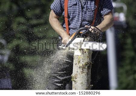 Men forester - stock photo