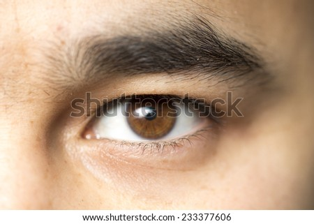 men's eyes macro - stock photo