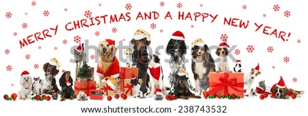 Merry christmas and a happy news year - stock photo