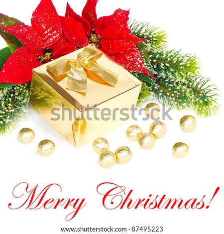 Merry Christmas! card concept. red christmas flower poinsettia with golden gift - stock photo