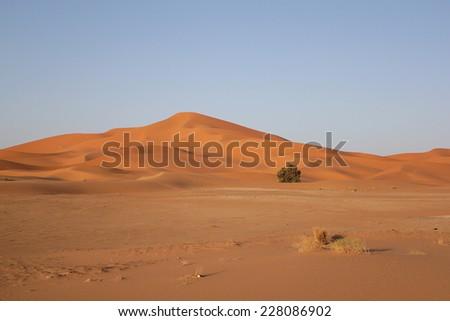 Merzouga desert. Morocco - stock photo