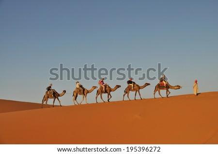 MERZOUGA DESERT - OCTOBER 01: Tourists in a camel caravan in Merzouga Desert, Morocco on October 01, 2013. - stock photo
