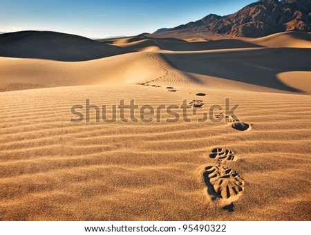 Mesquite Flat Sand dunes located in Death Valley National Park. View of a single track of footprints headed towards the camera. - stock photo