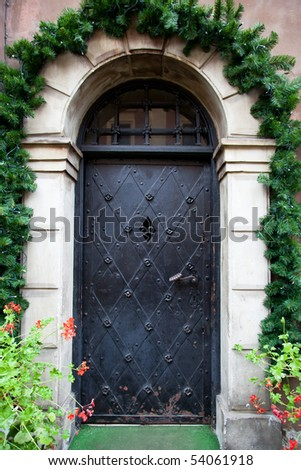 Metal arched doors with ornaments - stock photo