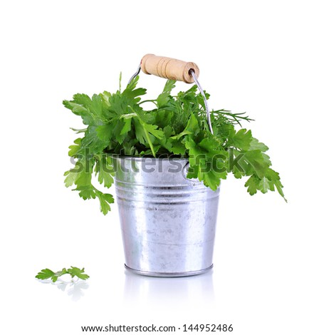 Metallic bucket with parsley and dill isolated on white - stock photo