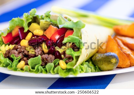 Mexican burrito with minced beef meat and bean - stock photo