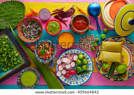 Mexican food mix with sauces nopal and tamale agave guacamole - stock photo