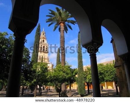 Mezquita yard, Cordoba - stock photo
