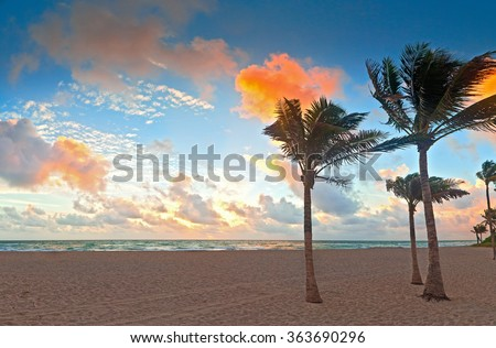 Miami Beach Florida at sunrise, beautiful colorful sky on a summer morning with palm trees