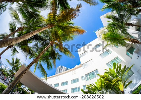 Miami Beach, Florida USA - August 1, 2014: The beautiful Shore Club Hotel in Miami Beach, a popular international travel destination, fish eye view with palm trees and art deco architecture. - stock photo