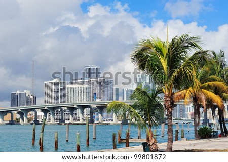 Miami city tropical view over sea from dock in the day with blue sky and cloud. - stock photo