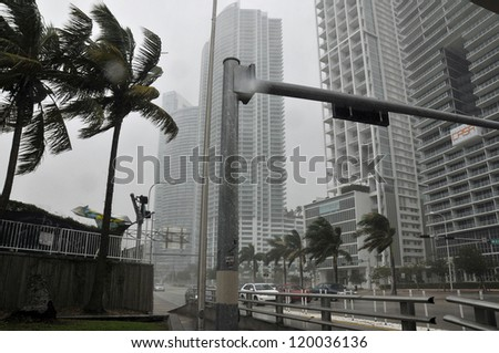 MIAMI - FLORIDA, OCTOBER 26: Wind blow trees in Downtown Miami during Hurricane Sandy cross the city on october 26 2012 in Miami, Florida, USA. - stock photo