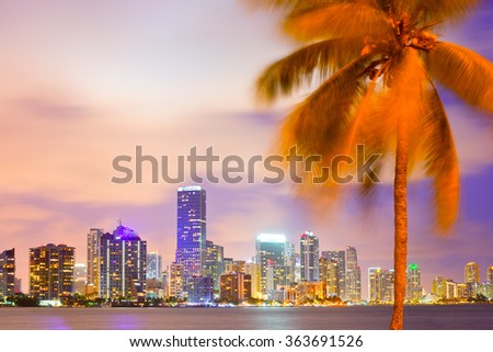 Miami Florida, sunset cityscape over the city panoramic skyline with lights on the modern downtown skyscraper buildings and palm tree in the foreground