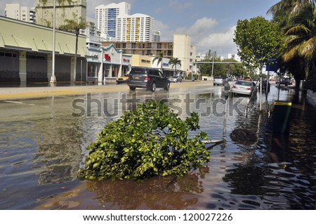 MIAMI - SOUTH BEACH - FLORIDA, OCTOBER 28:  Tree fall in Miami South beach Lenox Ave flood aftermath of Hurricane Sandy on october 28 2012 in Miami South Beach. - stock photo