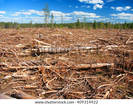 Michigan Logging Industry