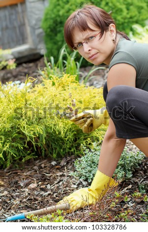 middle age woman gardener with flowers outdoor in her garden