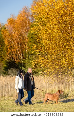 Middle aged couple walking retriever dog in sunny autumn countryside - stock photo