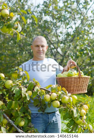 Middle-aged man surrounded by  apple trees at orchard - stock photo