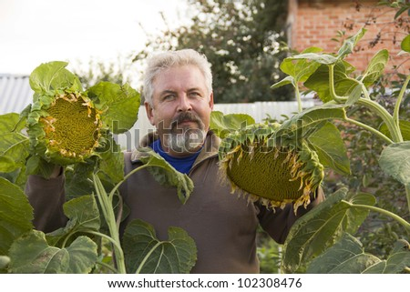 Middle-aged man with a sunflower