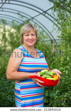 Middle-aged woman picking harvests in the greenhouse - stock photo