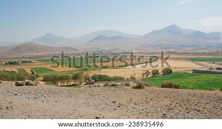 Middle eastern landscape with cedar forest, mountains on the background - stock photo